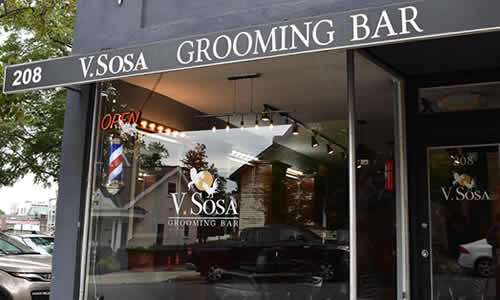 V.Sosa Grooming Bar Montclair NJ